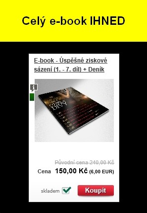 E-book: Úspěšné ziskové sázení