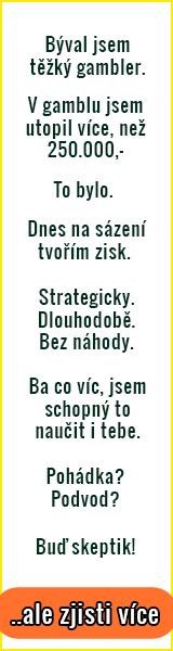 Strategický profit